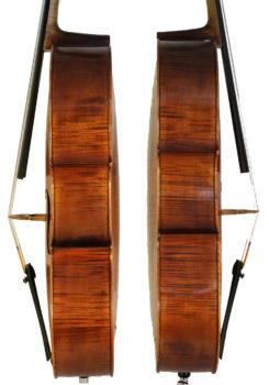 deluccia-cello3.jpg