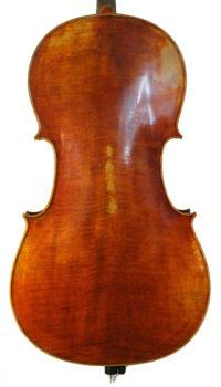 mougenot-cello2.jpg